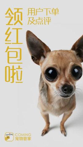 COMING宠物APP 1.1.20 安卓版