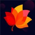 秋叶社区app
